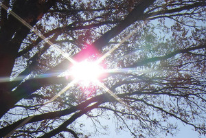 promienie słoneczne UV szkodzą skórze