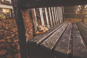 samotna starość